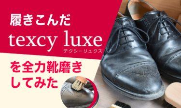 履き込んだtexcy luxe(テクシーリュクス)を全力靴磨きしてみた